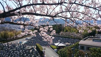 京都桃山霊園